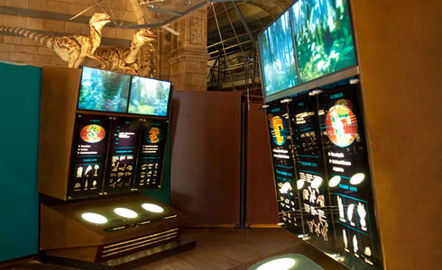 Some of the Interactive exhibits in the Dinosaur section